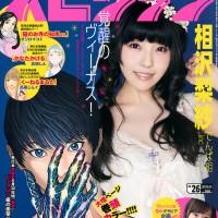 Big Comic Spirits, Magazine