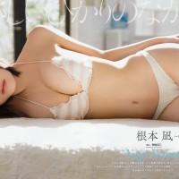 Magazine, Nemoto Nagi (根本凪), Niji no Conquistador (虹のコンキスタドール), Young Animal